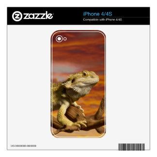 Bearded dragon (Pogona Vitticeps) on branch, Skin For iPhone 4S