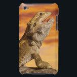 """Bearded dragon (Pogona Vitticeps) on rock, Case-Mate iPod Touch Case<br><div class=""""desc"""">Bearded dragon (Pogona Vitticeps) on rock,     Don Farrall   AssetID: 73552616</div>"""