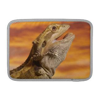 Bearded dragon (Pogona Vitticeps) on rock, Sleeves For MacBook Air