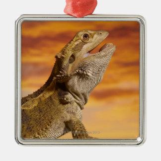 Bearded dragon (Pogona Vitticeps) on rock, Metal Ornament