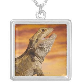 Bearded dragon (Pogona Vitticeps) on rock, Silver Plated Necklace