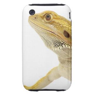 Bearded dragon (Pogona Vitticeps) Tough iPhone 3 Cover