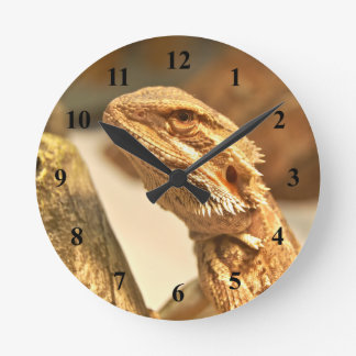 Bearded Dragon Round Clock