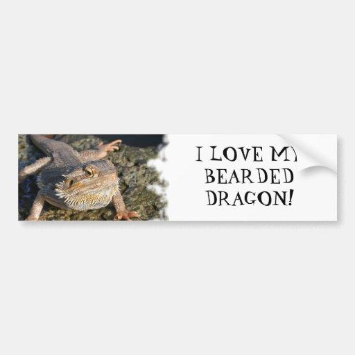 Bearded Dragon Series Car Bumper Sticker