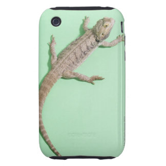 Bearded dragon tough iPhone 3 case