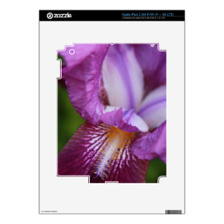 Bearded German Iris Decals For iPad 3