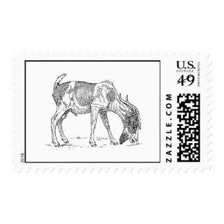 Bearded Goat Postage