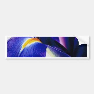 Bearded Iris Bumper Sticker