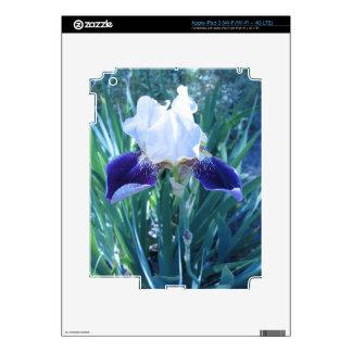 Bearded Iris Cultivar Mary Todd iPad 3 Decal