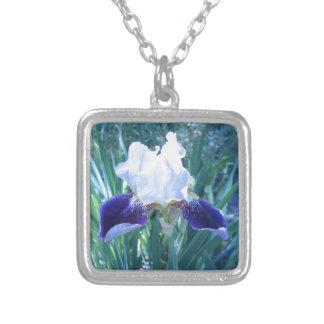Bearded Iris Cultivar Mary Todd Silver Plated Necklace