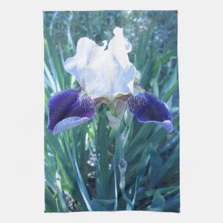 Bearded Iris Cultivar Mary Todd Towels