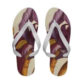 Bearded Iris Flip Flops