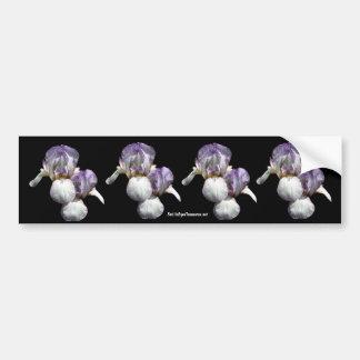 Bearded Iris Flower Photo Bumper Sticker