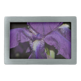 Bearded Iris in Purples Belt Buckle