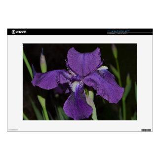Bearded Iris in Purples Laptop Decals