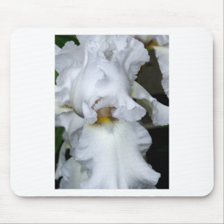 Bearded Iris In White Mouse Pad