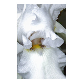 Bearded Iris In White Customized Stationery