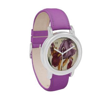 Bearded Iris Watch
