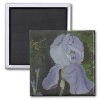 Bearded Irises Magnet