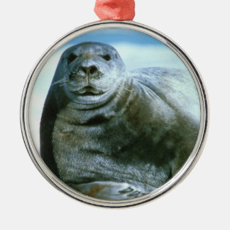 Bearded Seal Metal Ornament