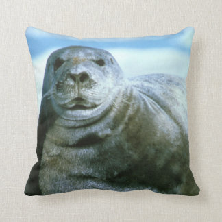 Bearded Seal Pillow by Mike Spindler