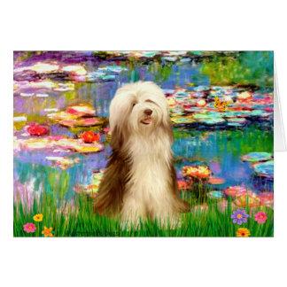 Beardie 16 - Lilies 2 Card