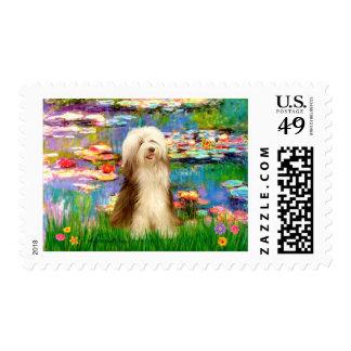 Beardie 16 - Lirios 2 Sellos Postales