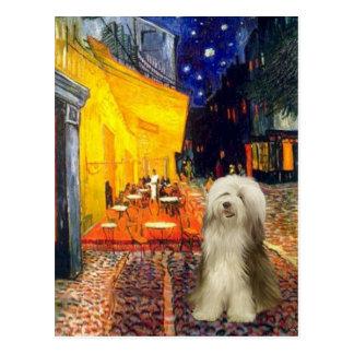 Beardie 16 - Terrace Cafe Postcard