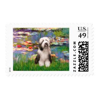 Beardie 1 - Lilies 2 Postage