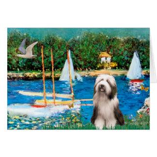 Beardie 1 - Sailboats Card