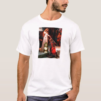 Beardie 9 - The Accolade T-Shirt
