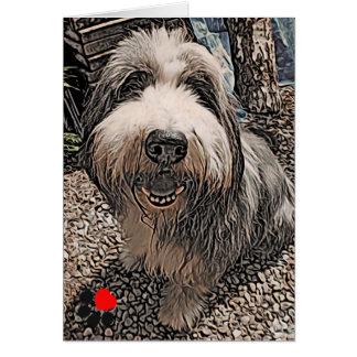 Beardie Happy Birthday Card