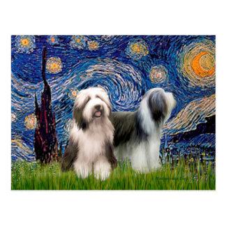 Beardie Pair 1 - Starry Night Postcard