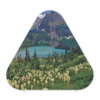 Beargrass above Grinnell Lake in the Many Bluetooth Speaker