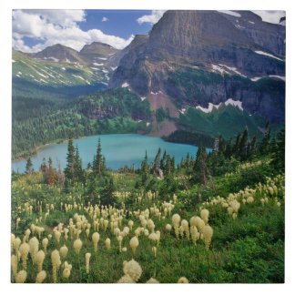 Beargrass above Grinnell Lake in the Many Ceramic Tile