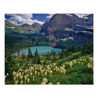 Beargrass above Grinnell Lake in the Many Poster