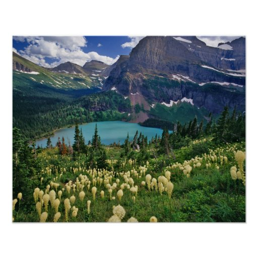 Beargrass above Grinnell Lake in the Many Print