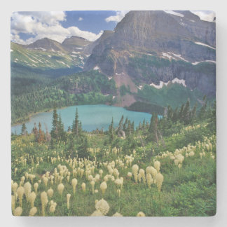 Beargrass above Grinnell Lake in the Many Stone Coaster