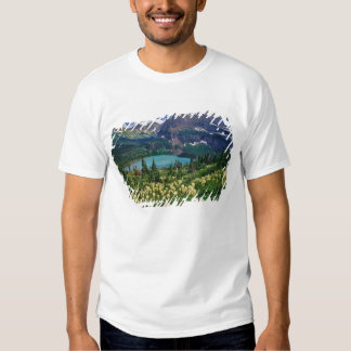 Beargrass above Grinnell Lake in the Many T Shirt