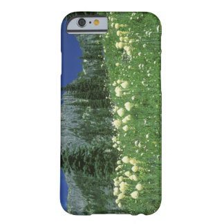 Beargrass at Eunice Lake, Mt. Rainier NP, WA, Barely There iPhone 6 Case