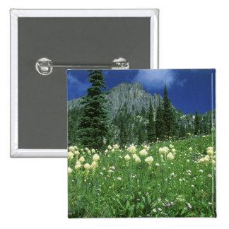 Beargrass at Eunice Lake, Mt. Rainier NP, WA, Button