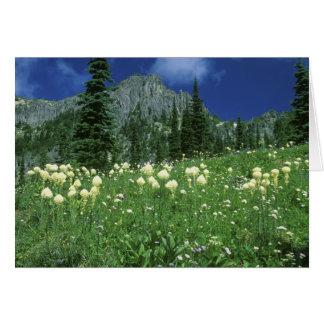 Beargrass at Eunice Lake, Mt. Rainier NP, WA, Greeting Card
