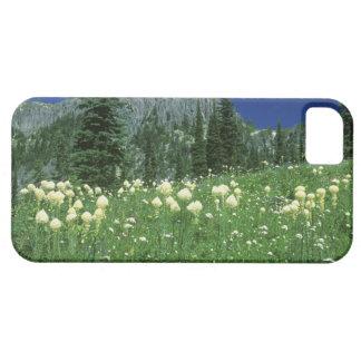 Beargrass at Eunice Lake, Mt. Rainier NP, WA, iPhone 5 Case