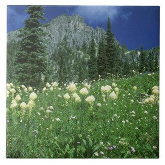 Beargrass at Eunice Lake, Mt. Rainier NP, WA, Ceramic Tile