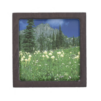 Beargrass at Eunice Lake, Mt. Rainier NP, WA, Keepsake Box