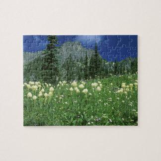 Beargrass at Eunice Lake, Mt. Rainier NP, WA, Puzzle