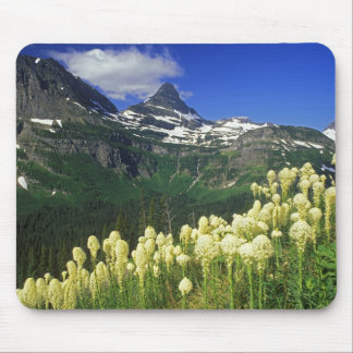 Beargrass at Logan Pass in Glacier National Park Mouse Pad