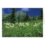 Beargrass en el lago eunice, el Monte Rainier NP,  Tarjeta De Felicitación