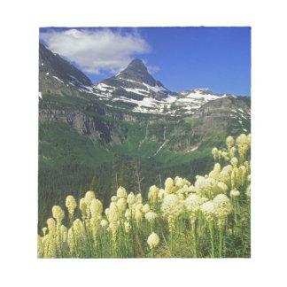 Beargrass en el paso de Logan en Parque Nacional G Bloc De Notas