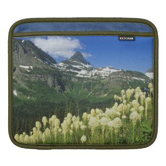 Beargrass near Logan Pass in Gacier National Sleeve For iPads